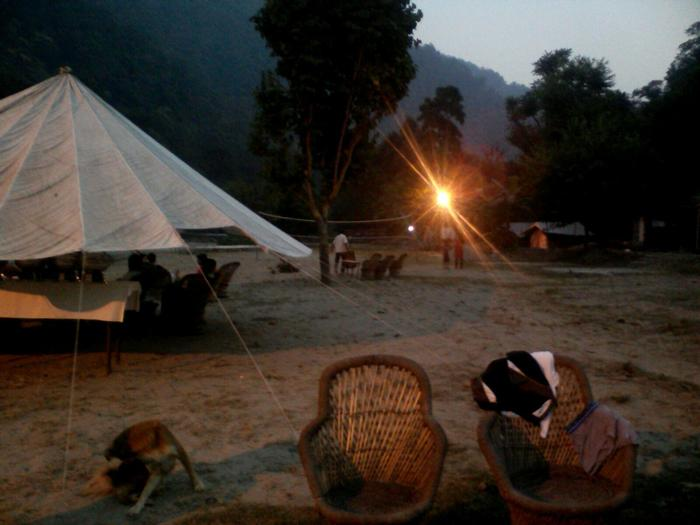 jungle Resorts In Rishikesh